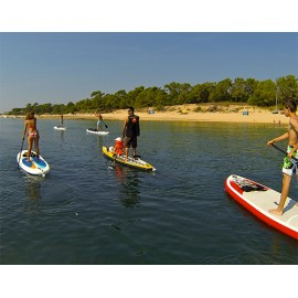 Balades en stand up paddle (traversée du Fier d'Ars)