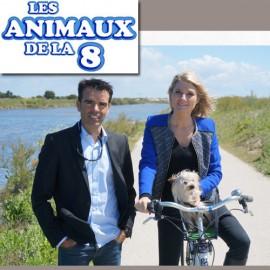 Les animaux de la 8 (2014)