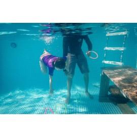 Découverte du milieu aquatique